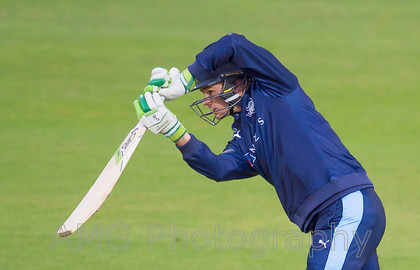 AM14441 