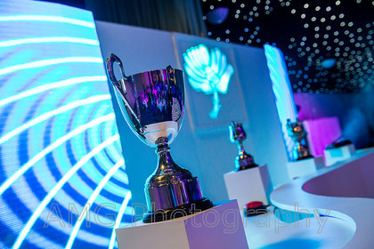 AM10113 