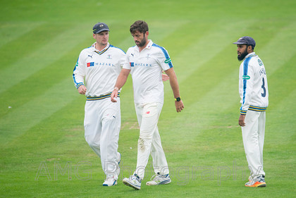 sw14 Yorkshire-v-Somerset 