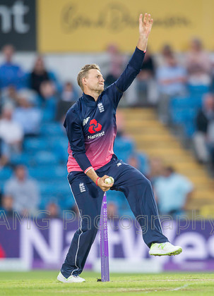 AM18808 