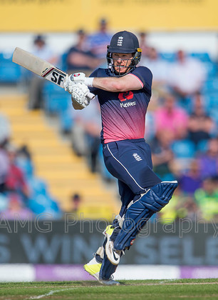 AM18185 
