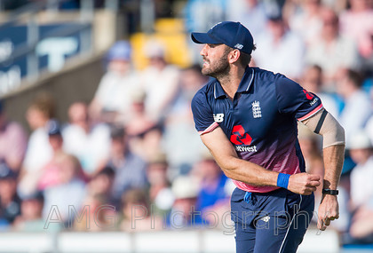 AM18303 