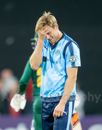 AM18595 