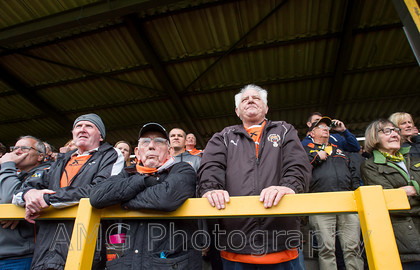 AM12894 