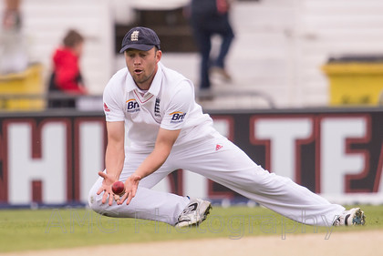 Eng v NZ-019 