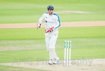 AM10236 