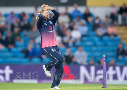AM18812 