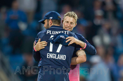 AM18856 