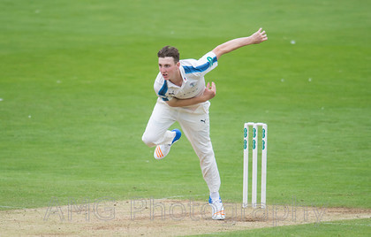 sw16 Yorkshire-v-Somerset 