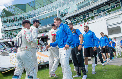 AM12071 