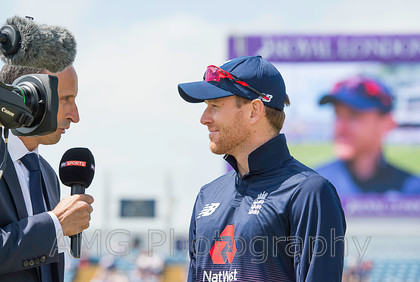 AM28032 