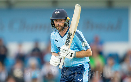 AM18114 