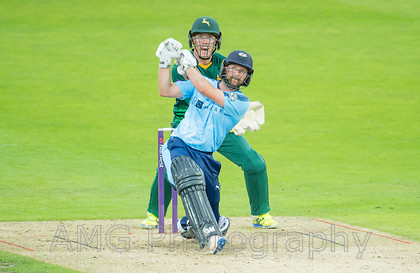 sw08 Yorkshire v Notts 