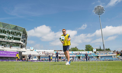 AM17682 