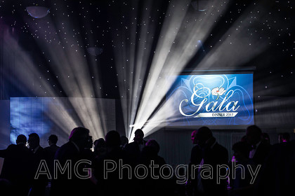 AM20712 