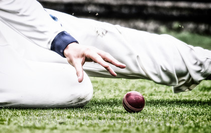 AM16854-Edit 