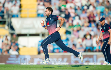 AM18560 
