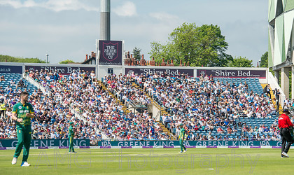 AM28060 