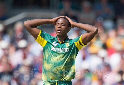 AM17778 